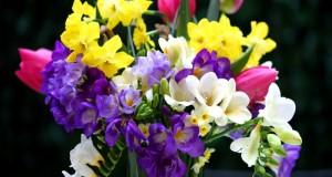 Câţi români îşi serbează onomastica de Florii