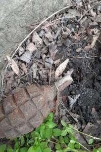Grenadă de mână defensivă, descoperită la Cucuteni