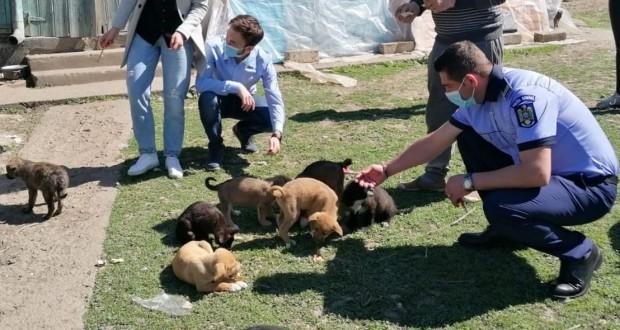Activități specifice ale Biroului de Protecție a Animalelor