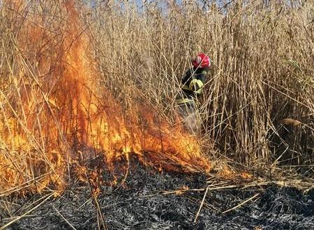 Două incendii de vegetație uscată produse pe raza comunei Stăuceni și în zona Lebăda
